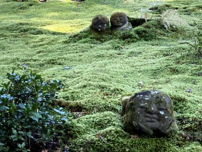 20代娘と母 墓参りと京都散策 ② 大原と下鴨神社