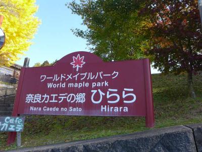 奈良カエデの郷~ひらら~・ワールドメイプルパーク