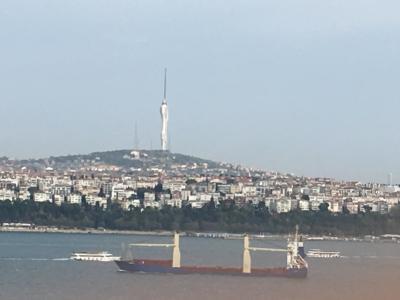 トルコ周遊: ボスポラス海峡クルーズ、約90分程のショートコースで海上から眺めます