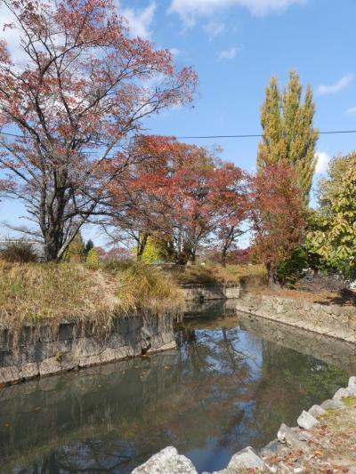 秋の「五稜郭」_2019_と言っても長野県です。(佐久市田口)