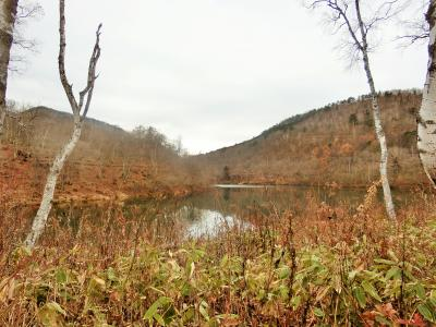 晩秋の志賀高原へ。②ハイキングで琵琶池へ。