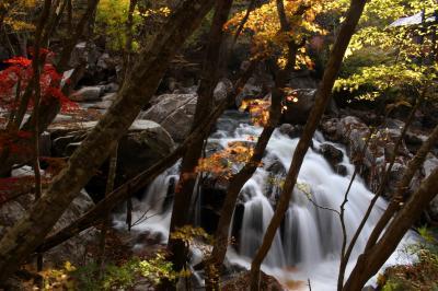 ◆錦秋の山鶏滝渓谷(山鶏滝)編
