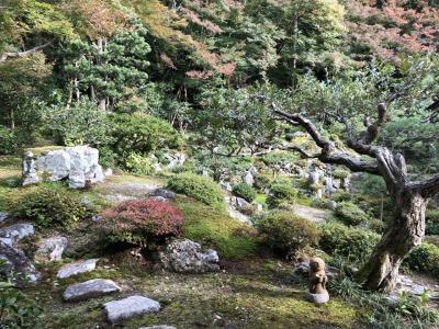近場で秋の遠足 Part2 お寺の庭で癒される編