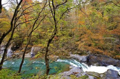 【紅葉】鳴虫山~憾満ヶ淵~日光東照宮 電車で行く日帰りハイキング