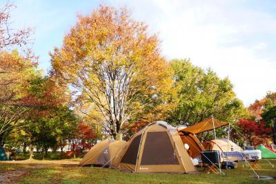 美しい紅葉の中で人生初キャンプ!