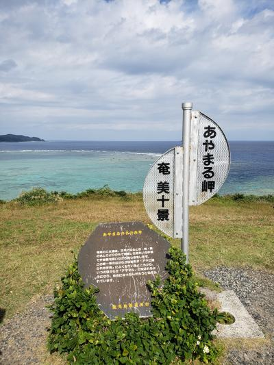 子連れで鹿児島&奄美大島旅行 5日目&お土産