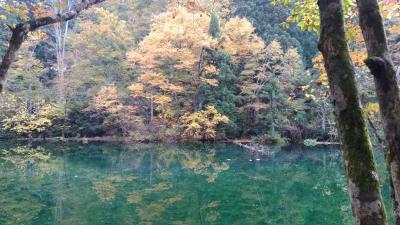 四季を通して楽しむ湯沢《紅葉満開!》