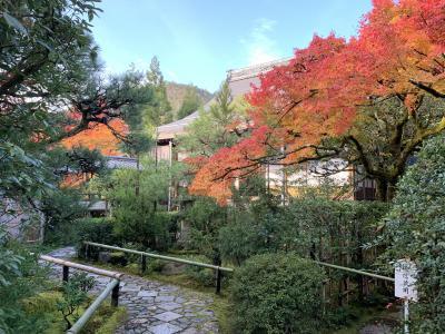 朝観光(20ー1) 京都の紅葉(鷹峯)