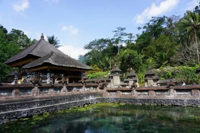 2019年11月バリ島Bali ウブド観光 ライステラスに世界遺産ティルタ ウンプル寺院(聖なる泉が湧く寺院)