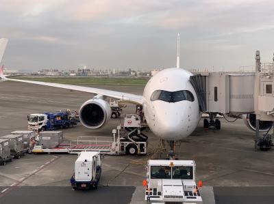 A350で福岡日帰り旅