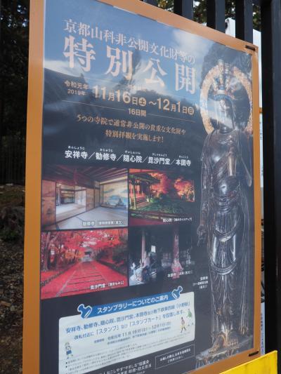 京都・山科その1、安祥寺から疎水の道を