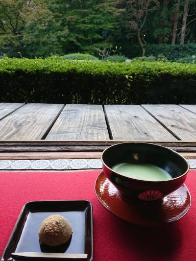 紅葉には少し早かった京都旅行