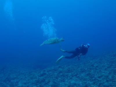 高波で行かれなかった慶良間ダイビング