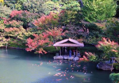 白金・目黒散策:八芳園、池田山公園の紅葉他