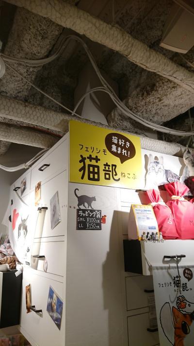 香川県→愛媛から大阪へ