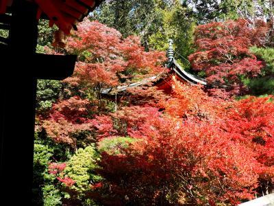 京都・山科その2、毘沙門堂と山科聖天