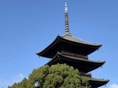 ぶらっと京都 毎月21日は弘法市
