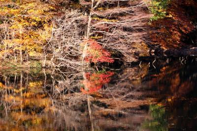 ◆錦繍の水鏡・滑川砂防ダム(その1)