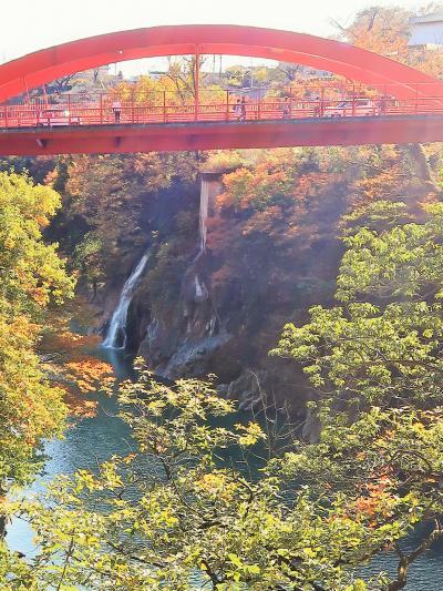 高津戸峡-1 高津戸峡遊歩道 約500mを往復 ☆渡良瀬川沿いに紅葉色づき