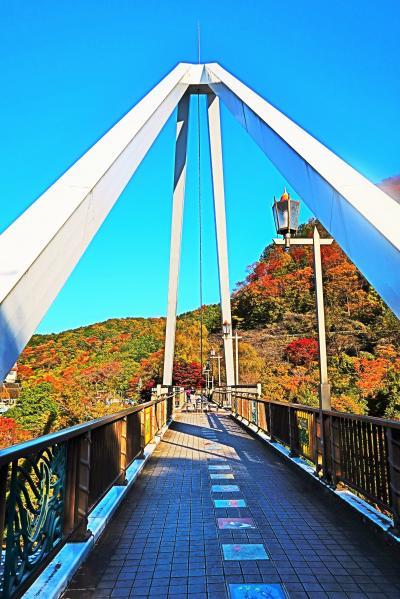 高津戸峡-2 はねたき橋 歩行者専用橋120mを往復 ☆道了尊/天狗の大下駄-拝見し