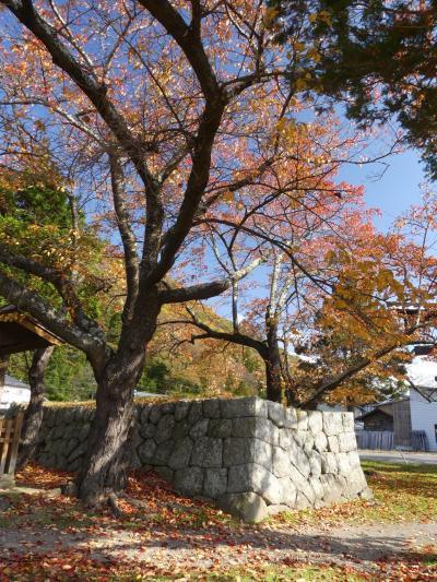 秋の「五稜郭」の後は_2019_佐久市田口地区を散策しました。(長野県・佐久市)