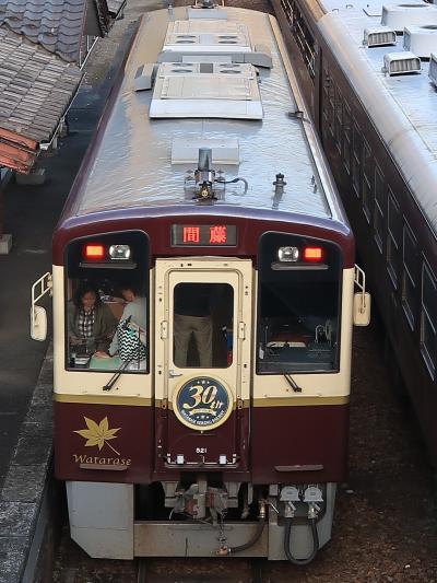 わたらせ渓谷鐵道-2 水沼駅・温泉センターを併設 ☆トロッコ列車-30周年列車-交換