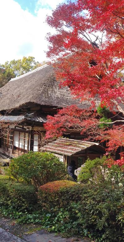 紅葉真っ盛りだった北大路魯山人の春風萬里荘