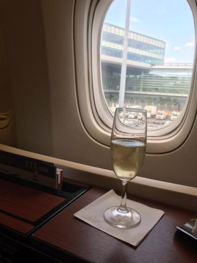 修業後の旅  ANA ポイント使用 JAL 特典航空券でNY