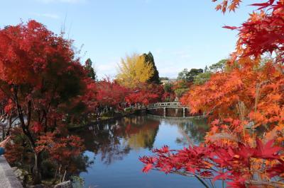 あ、そうだ、ちょっと京都まで紅葉を見に行こう!