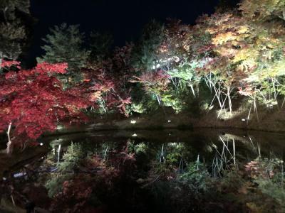 二日続けて小さな紅葉狩り、福田美術館と高台寺、2019年11月22日の嵐山