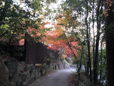 有田ちゃわん祭り2019 器と紅葉、美味を求めて秋のドライブ②