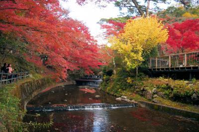 ■ 岩屋堂公園 紅葉狩りの旅 <愛知県>