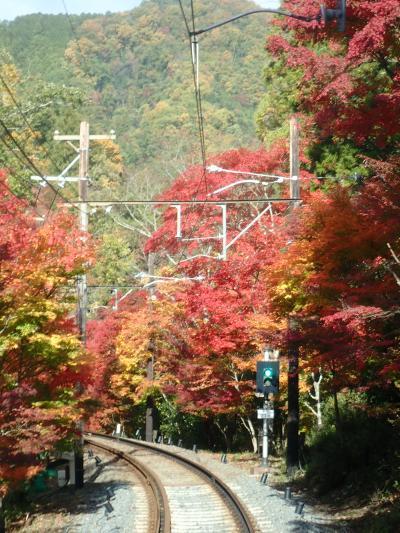 紅葉!京都3泊4日 ②二ノ瀬・鞍馬