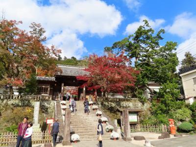 縁(えにし)~伊豆の旅・2日目:修善寺の部