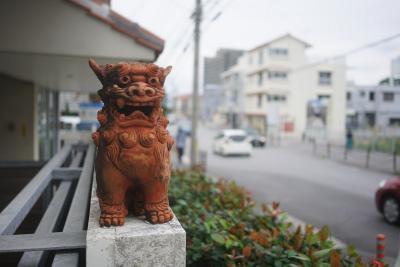 【沖縄】日帰りで火災直後の首里城周辺散策~那覇