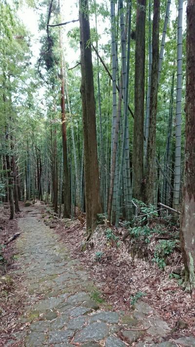 わいわい♪女6人旅~熊野古道・松本峠を歩く~