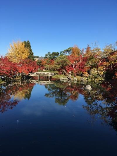 永観堂と圓光寺2019紅葉狩ランin京都