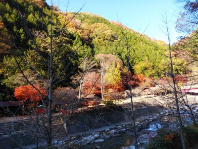 紅葉に導かれて塩山から日川渓谷周辺