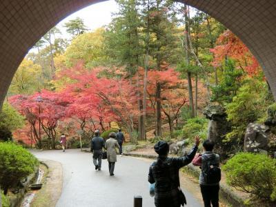 美しい越後の紅葉 2 弥彦村 椿寿荘 弥彦神社 弥彦公園