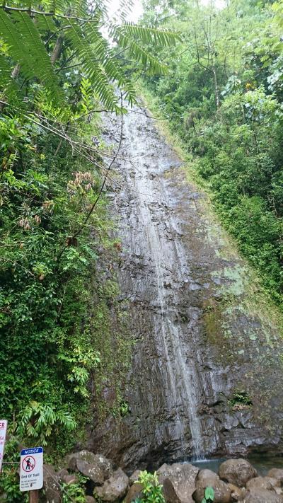 2019年11月、雨季に入ったハワイは雨も降るけど過ごしやすい! ③ 5日目 マノアの滝~最終日