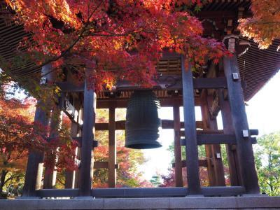 2019京都の紅葉 その2