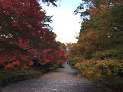 紅葉を求め嵯峨野を巡る旅(見頃には少し早かった)
