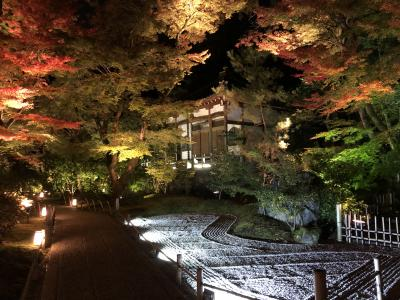 2019年11月 京都嵐山の紅葉 嵐電嵐山駅・宝厳院(ライトアップ)