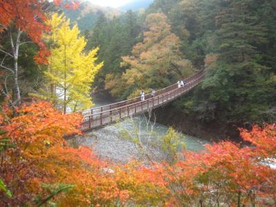 雨が上がった そうだ、秋川渓谷に紅葉見に行こう!