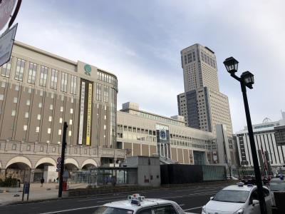 遠征はJALで行こう!2019年J1第32節 北海道コンサドーレ札幌VSジュビロ磐田戦