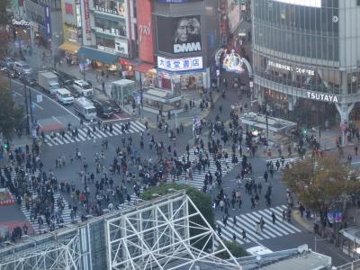 お上りさんは高い所が好き。Shibuya Scramble Square を見て来ました。