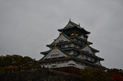 巨大な縄張り、大坂城