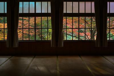 紅葉穴場巡り(滋賀・湖東)