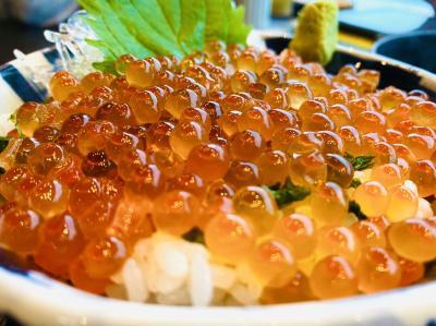伊豆の海鮮食べ尽くし?ちょっと贅沢に誕生日旅行!【後編】