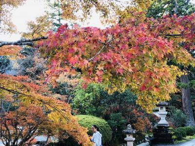紅葉と蟹とお寿司の加賀、金沢。